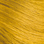 Color Pigments: calcite yellow